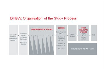Organisation of the Study Process
